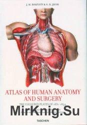 Atlas of Human Anatomy and Surgery / Атлас по анатомии человека и хирургии