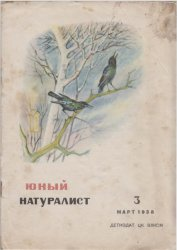 Юный натуралист №3 1938