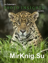 Photo Insights July 2016