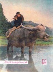 Юный натуралист №10 1959