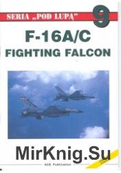 Seria Pod Lupa 09 - F-16A&C Fighting Falcon
