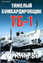 Тяжелый бомбардировщик ТБ-1 (Авиационный фонд)