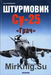 """Штурмовик Су-25 """"Грач"""" (Авиационный фонд)"""
