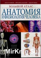 Анатомия и физиология человека: Большой атлас
