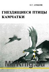 Гнездящиеся птицы Камчатки