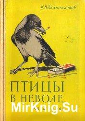 Птицы в неволе