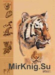 Изображение животных. Учебник по пластической анатомии