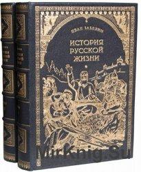 История русской жизни с древнейших времён (в 2-х томах)
