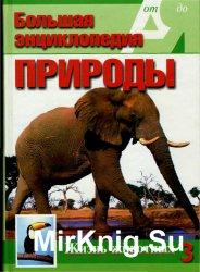 Большая энциклопедия природы. Жизнь животных. Том 3