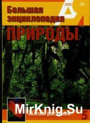 Большая энциклопедия природы. Жизнь растений. Том 5