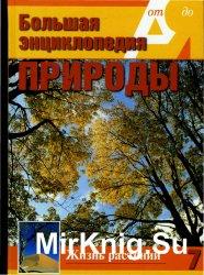 Большая энциклопедия природы. Жизнь растений. Том 7