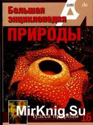 Большая энциклопедия природы. Чудеса природы. Том 16