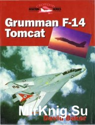 Grumman F-14 Tomcat (Crowood Aviation)