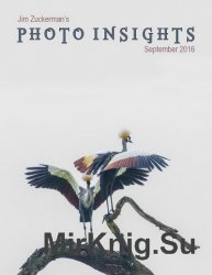 Photo Insights September 2016