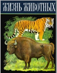 Жизнь животных: Млекопитающие или звери