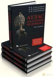 Атлас анатомии человека в 4 томах (2009)