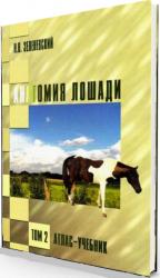 Анатомия лошади. В 3-х томах
