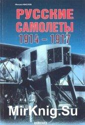 Русские самолеты 1914-1917 (Авиационный фонд)
