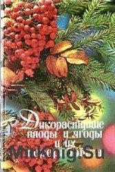 Дикорастущие плоды и ягоды и их переработка