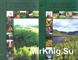 Энциклопедия лесного хозяйства в 2-х томах