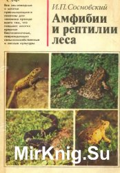 Амфибии и рептилии леса