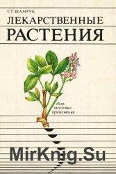 Лекарственные растения: сбор, заготовка, применение