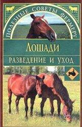 Лошади. Разведение и уход