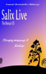 Погружение в Salix