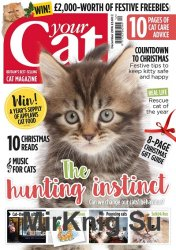Your Cat - December 2016