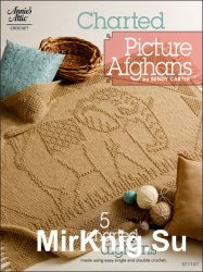 Charted Picture Afghans