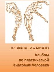 Альбом по пластической анатомии человека