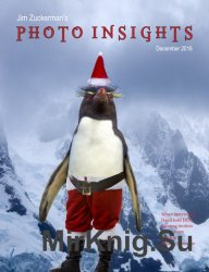 Photo Insights December 2016