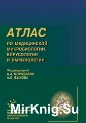 Атлас по медицинской микробиологии, вирусологии и иммунологии