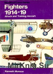 Fighters: Attack and Training Aircraft, 1914-19 (Colour)