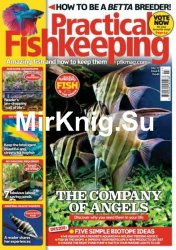 Practical Fishkeeping July 2017