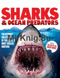 Sharks & Ocean Predators