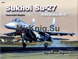 Sukhoi SU-27 Flanker (Walk Around 5547)