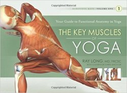 The Key Muscles Of Yoga: Your Guide To Functional Anatomy In Yoga