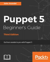 Puppet 5 Beginner's Guide, 3rd Edition (+code)