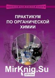 Практикум по органической химии (2015)