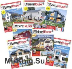 EffizienzHauser - 2017 Full Year Issues Collection