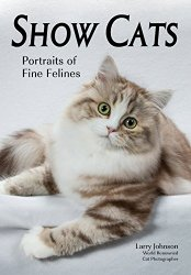 Show Cats: Portraits of Fine Felines