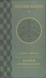 Кельты. История и культура