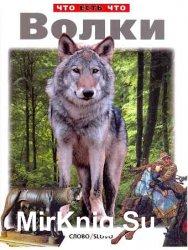 Волки. Что есть что