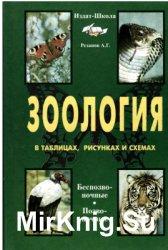 Зоология в таблицах, схемах и рисунках. 7-8 класс