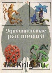 Удивительные растения. Комплект из 32 открыток