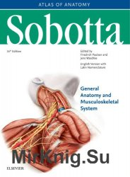 Sobotta Atlas of Anatomy General Anatomy and Musculoskeletal System. Volume 1.  16th Edition