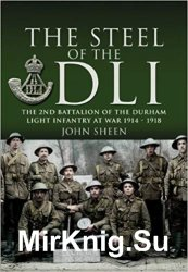 Steel of the DLI (2nd Bn 1914/18)
