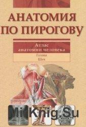 Анатомия по Пирогову. Атлас анатомии человека.Том 2. Голова. Шея
