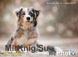 WePhoto. Animals Vol.6 - June 2019 - «Журналы»